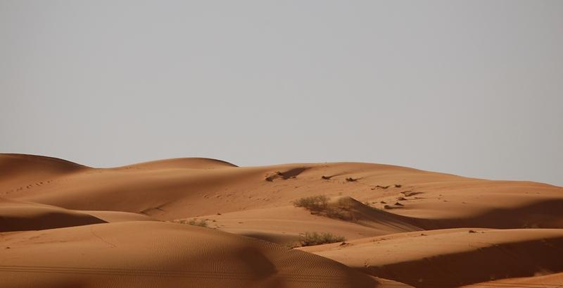 Oman(19)